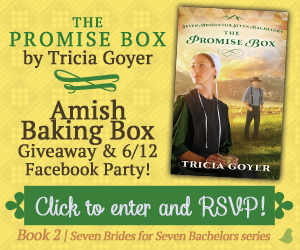 Promise Box by Tricia Goyer *Book Review*